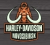 "Компания ""Harley-davidson"""